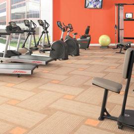 Residential Gym Design